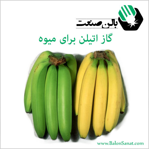 نحوه استفاده از گاز اتیلن برای رسیدن و عمل آوری میوه